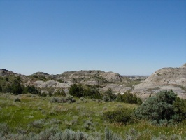 Theodore Roosevelt National Park - Aug 2001