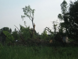 June07 - Tornado Damage